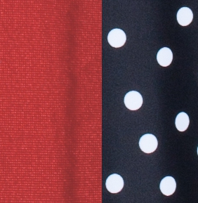 black and white dotted pattern and red